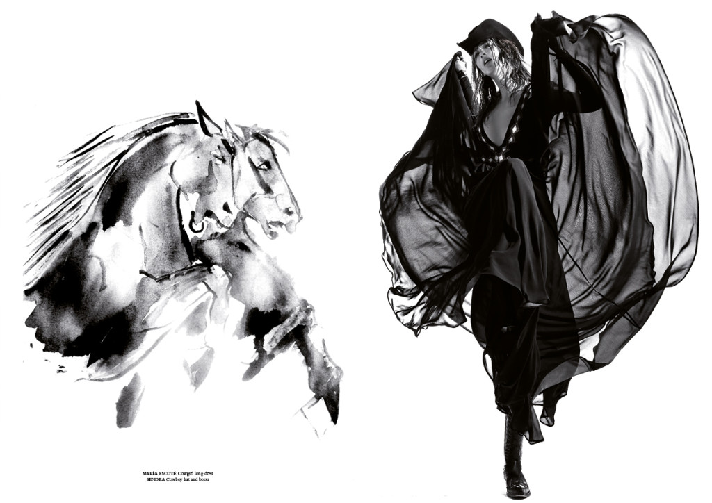 horse34