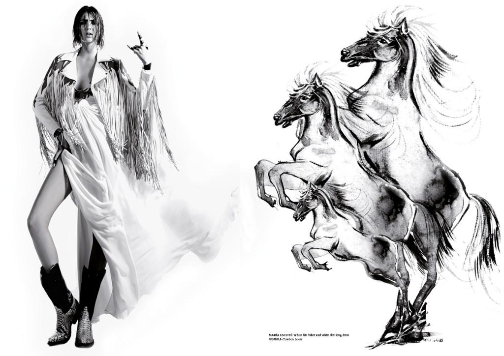 horse36