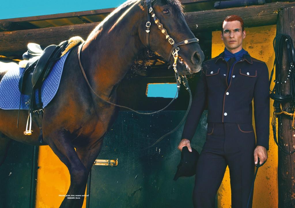 horse63