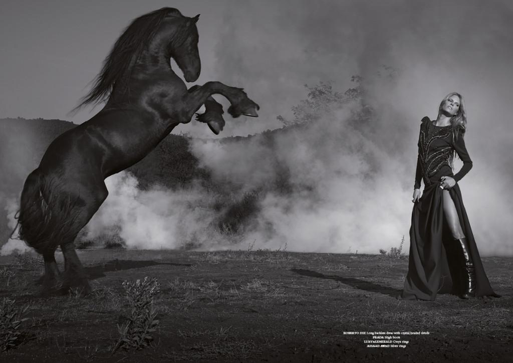 horse23