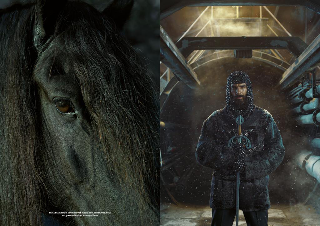 horse24