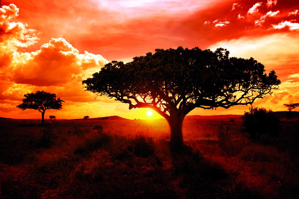 puesta de sol_Kenia_ok