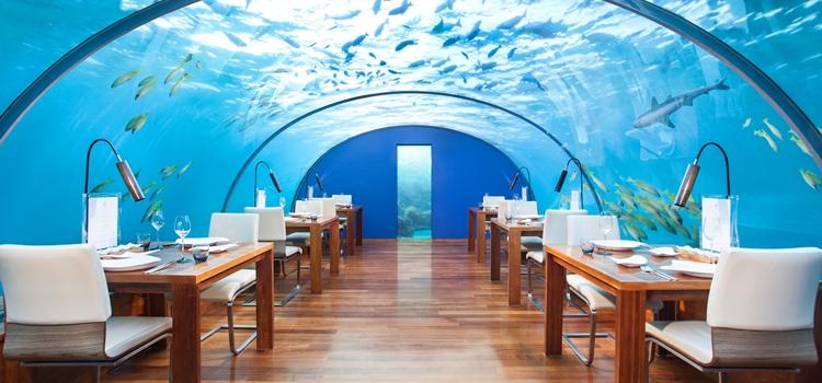 Ithaa_Undersea
