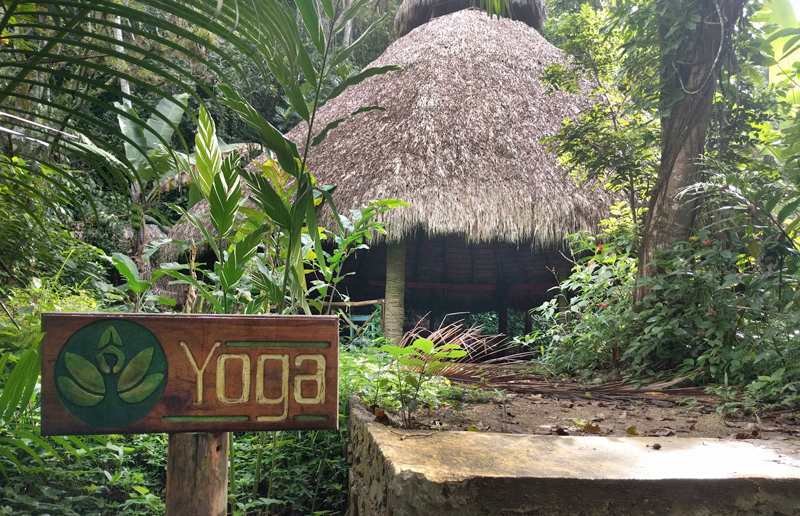 yoga-dome-treehouse-glamping