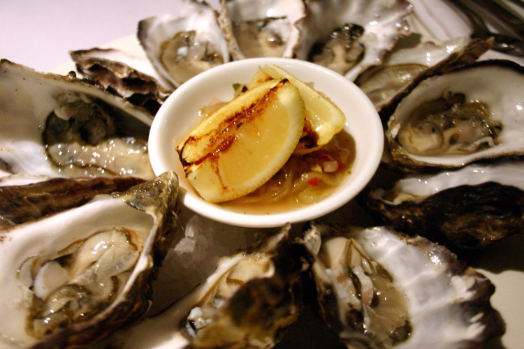 oysters-1512278