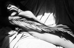 Emilio Jiménez, anatomia natural salvaje, fotografía, ,Magazine Horse, arte y diseño, blanco y negro, black and white, sombras