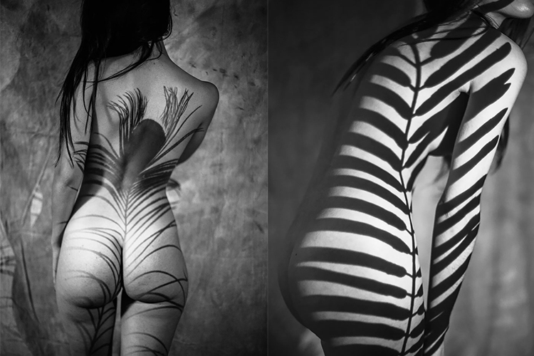 Emilio Jiménez, anatomia natural salvaje, fotografia,Magazine Horse, arte y diseño