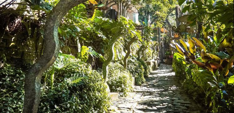 Sendero por el que transcrurre la visita al Jardín de Edward James
