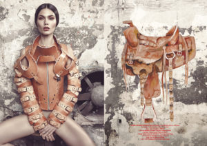 Editorial Greg Swales Horse