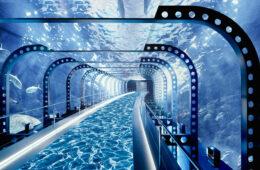 circuito-magico-del-agua-playmedia-magazinehorse