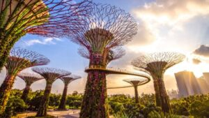 Super-tree-garden-by-the-bay-singapour-magazinehorse
