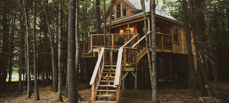 Cabaña - The Woods Main