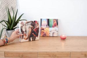 lienzo-regalos-Hofmann-Magazine-Horse