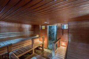 sauna-marriot-villas-finlandia-magazine-horse