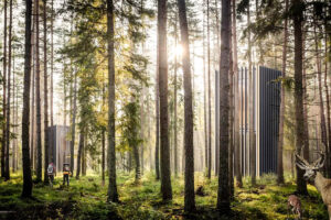 jorge-cabina-woods-diseño-arquitectura-tiny-houses-magazine-horse