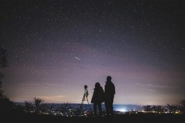 kiwi-viajes-magazinehorse